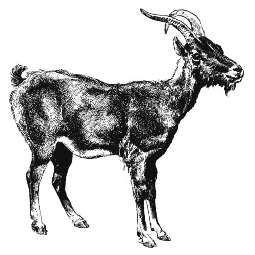 Goat - Männer Premium T-Shirt