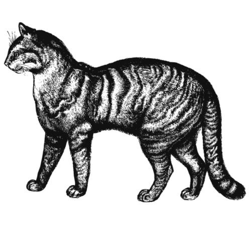 Retro Katze - Männer Premium T-Shirt
