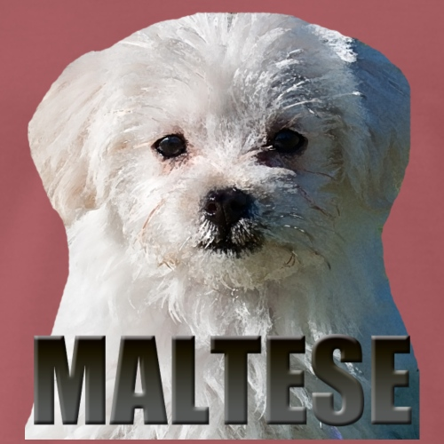 Maltese - Premium T-skjorte for menn