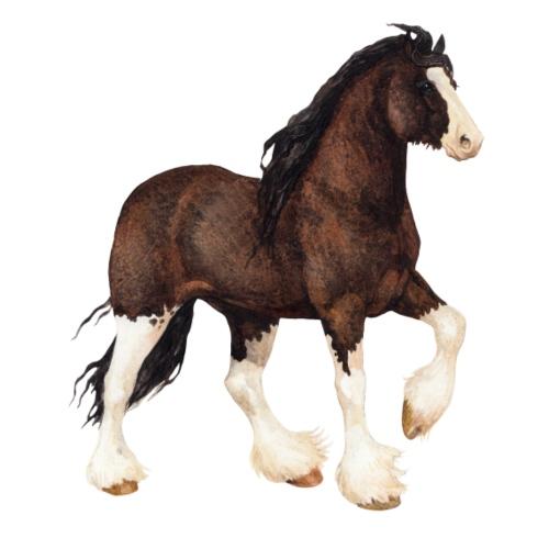 Shire Horse - Männer Premium T-Shirt