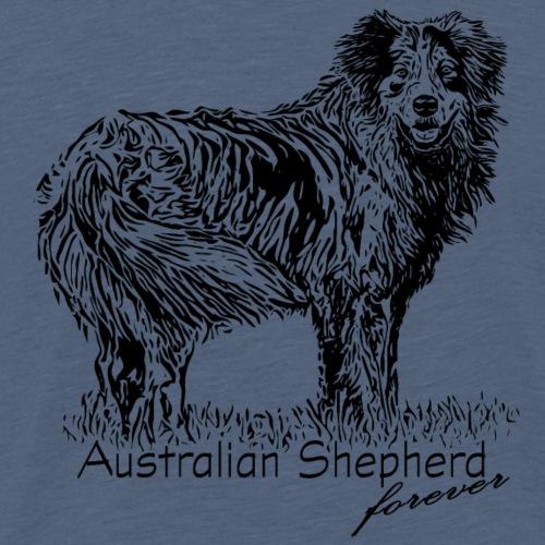 Australian Shepherd - Portrait 1