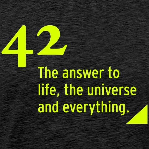 42 - the answer - Männer Premium T-Shirt