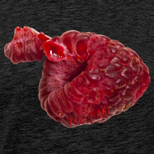 Himbeere - Männer Premium T-Shirt