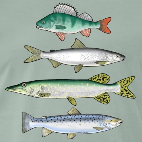10-34 FOUR FISH - Ahven, siika, hauki ja taimen - Miesten premium t-paita