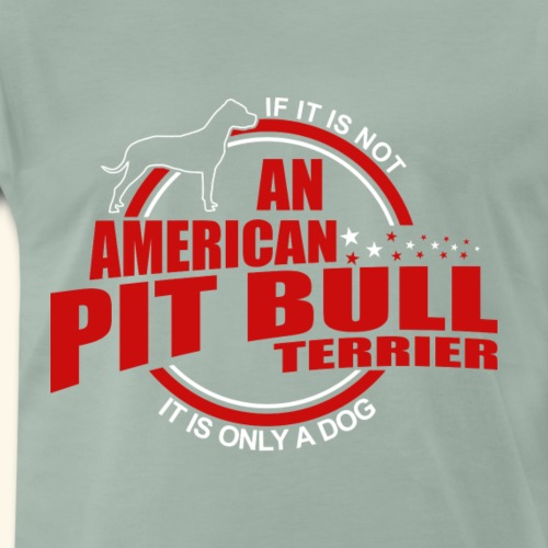 If it is not a American Pit Bull Terrier it is onl - Männer Premium T-Shirt