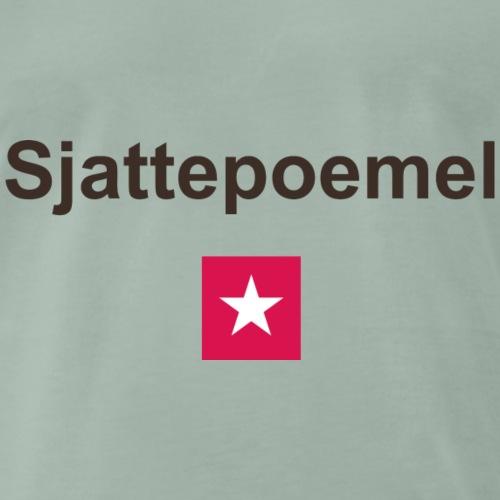 Sjattepoemel mr b - Mannen Premium T-shirt