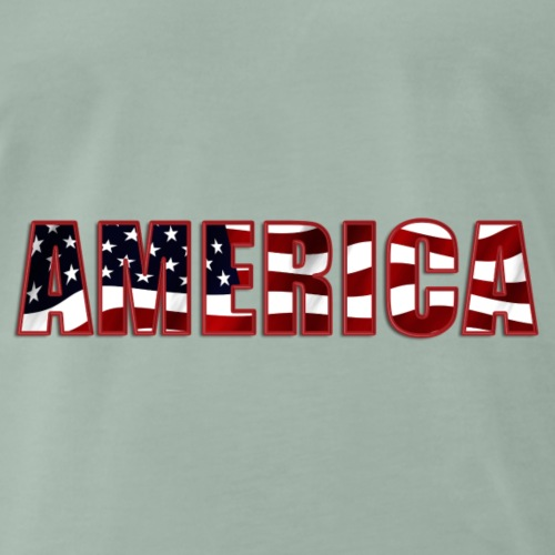 America - Männer Premium T-Shirt