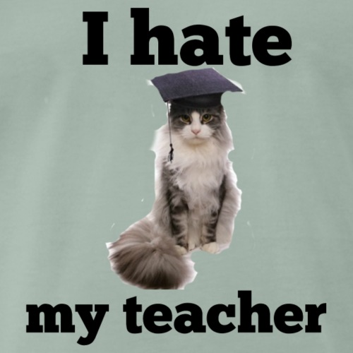 I hate my teacher - Men's Premium T-Shirt