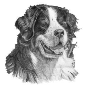 berner sennen hund S - Herre premium T-shirt