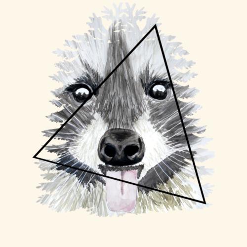 Raccoon - Camiseta premium hombre