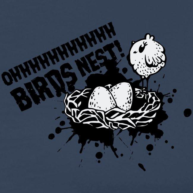 Birds Nest With Bird