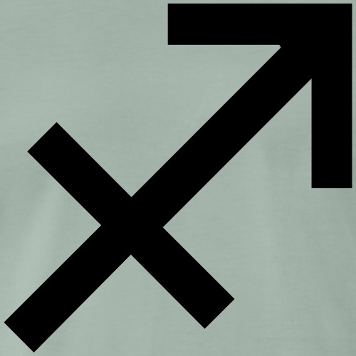 Schütze, Dezember, Sternzeichen, Astrologie, - Männer Premium T-Shirt