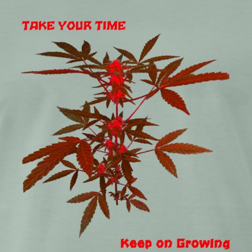 keep on growing 5 - Maglietta Premium da uomo