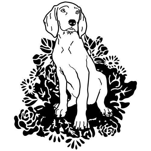 Weimaraner pup flower - www.dog-power.nl © - Mannen Premium T-shirt