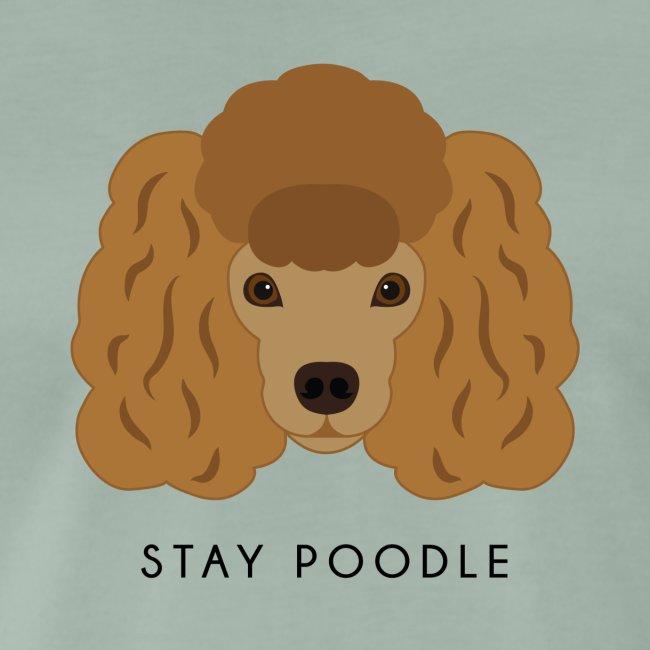 Poodle Brown