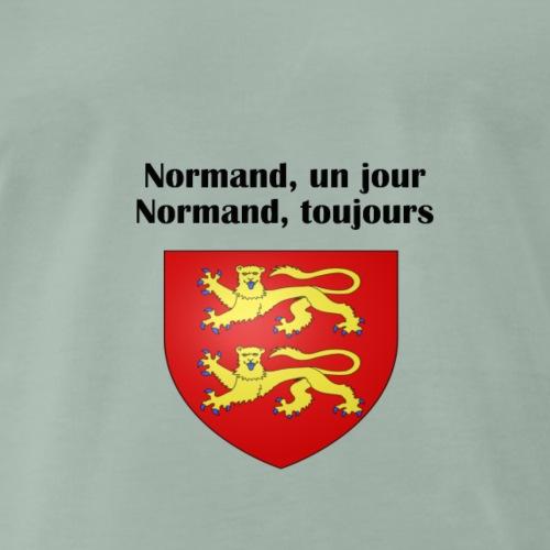 normand, un jour, normand, toujours - T-shirt Premium Homme