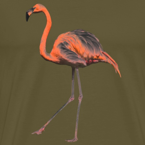 Chrome-Flamingo - Männer Premium T-Shirt