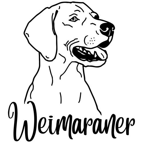 Weimaraner 2020 02 - www.dog-power.nl © - Mannen Premium T-shirt