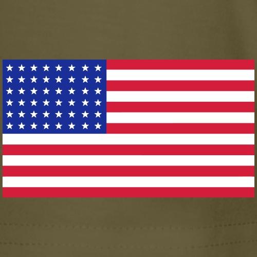AVM WWII 48 star USA flag - multi color vector