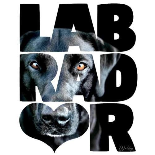 NASSU Labrador Black III - Miesten premium t-paita