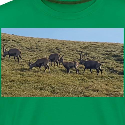AufNReiting - Männer Premium T-Shirt