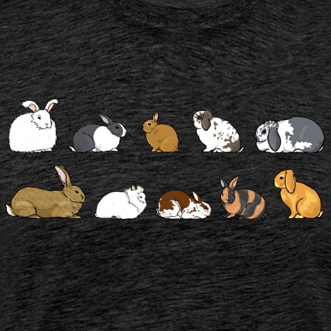 Rabbit s