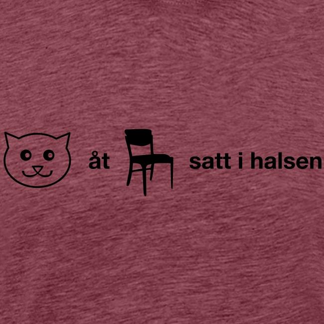 Katt åt stol