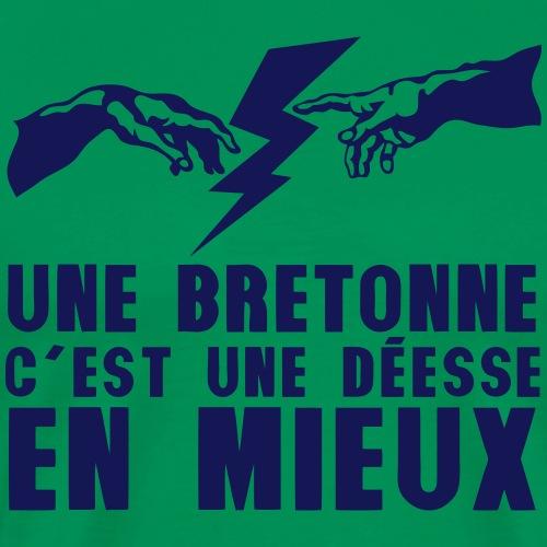 bretonne deesse en mieux main eclair 652 - T-shirt Premium Homme