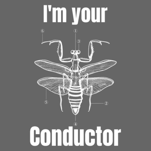 I am your conductor
