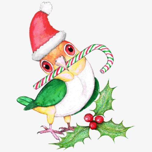 Witbuik caique in Kerstmis style