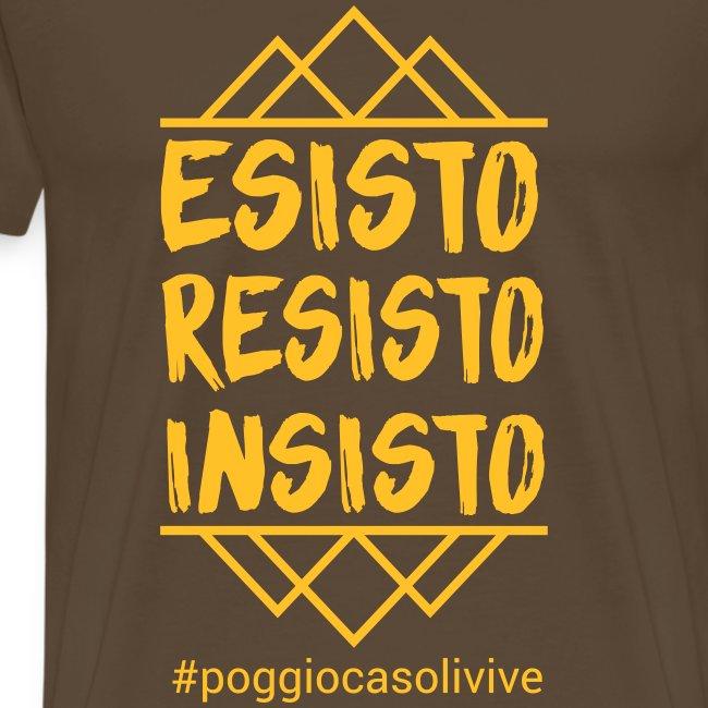 patch resisto