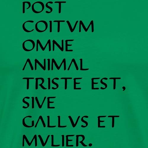 triste post coitum ii - Männer Premium T-Shirt