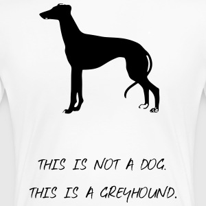 Windhund - Frauen Premium T-Shirt