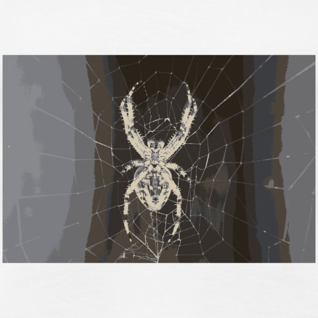 attacking spider