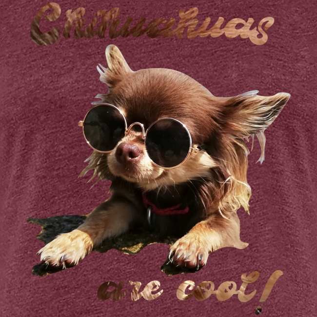 Chihuahua T-Shirts Chihuahuas are cool