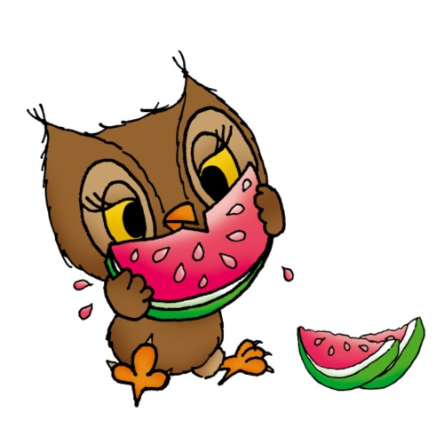 Eule Wassermelone - Frauen Premium T-Shirt