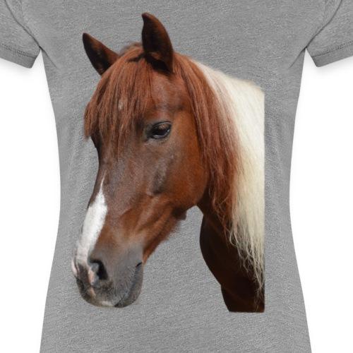 Amigo - Frauen Premium T-Shirt