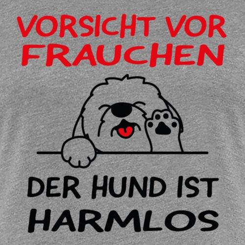 Vorsicht vor Frauchen - Hund ist harmlos - Frauen Premium T-Shirt