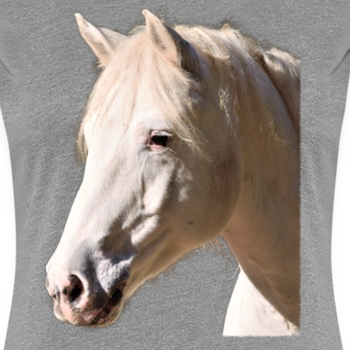 Dreamy fertig - Frauen Premium T-Shirt