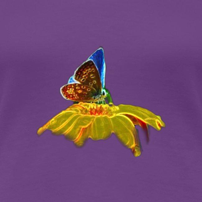Farfalla su corolla