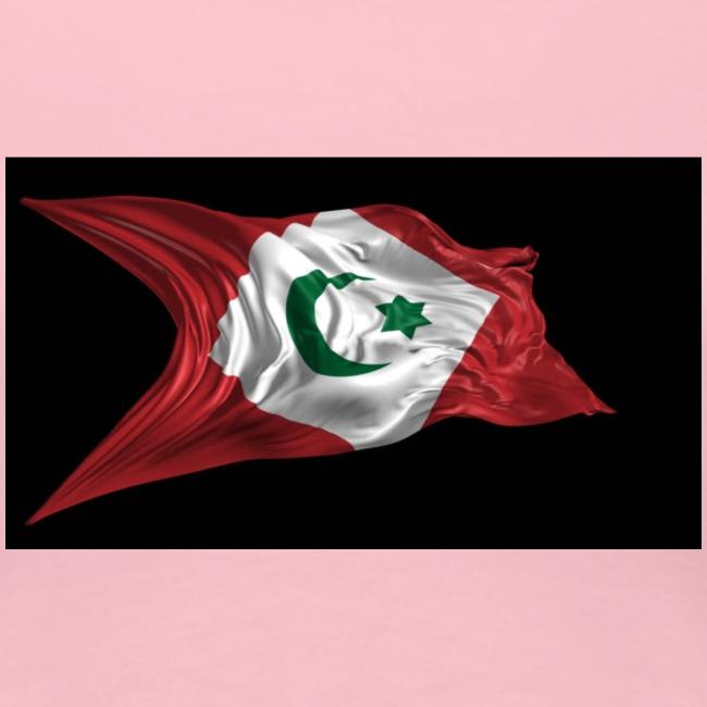 rif flag drapeau du rif de 1921 au 1927 Tamazgha..
