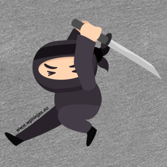 Ninjasingle sword