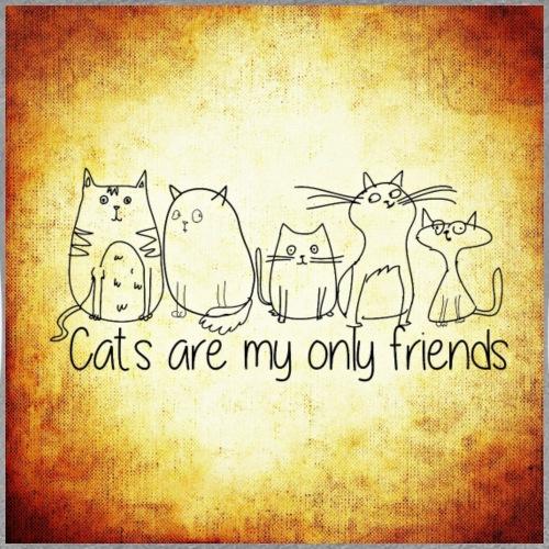 Katzen & Freunde - Frauen Premium T-Shirt