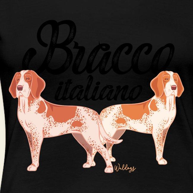 Bracco Italiano III