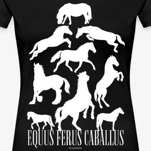 Equus Ferus Caballus - Naisten premium t-paita