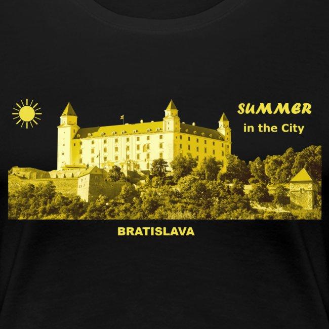 Summer Bratislava City Slowakei Burg Donau Sommer
