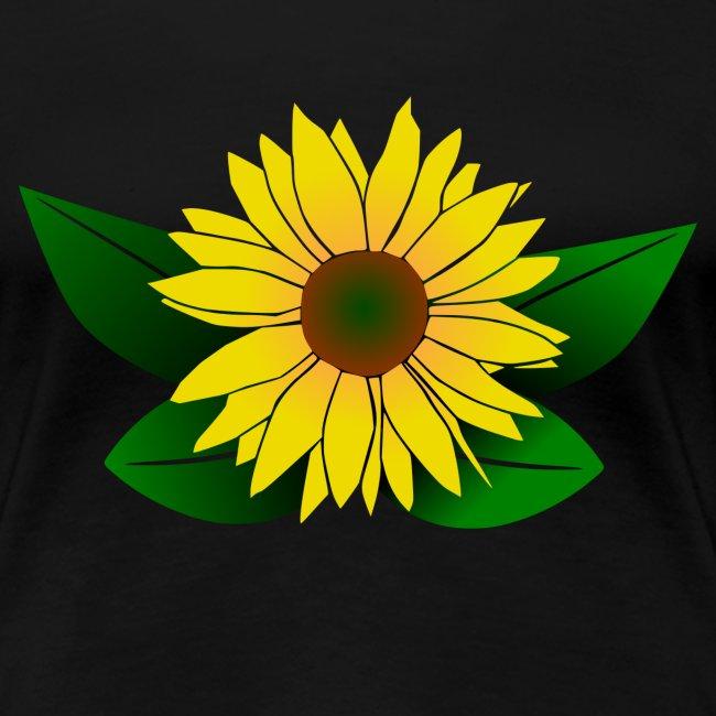 Sonnenblume, Sonnenblumen
