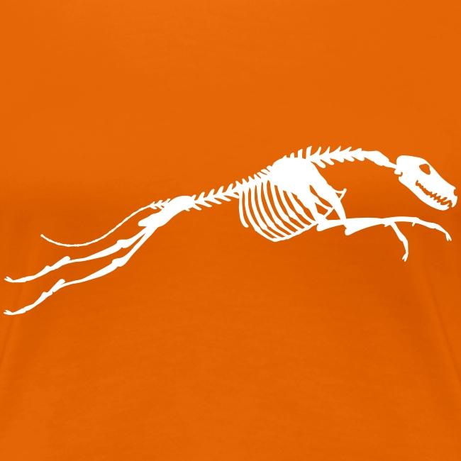 Juokse Luuranko Run Skeleton