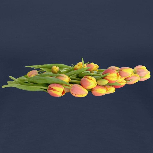 Tulpen Frühling Spring