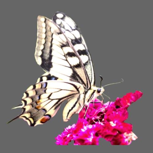 Geschenkidee Schwalbenschwanz Schmetterling - Frauen Premium T-Shirt